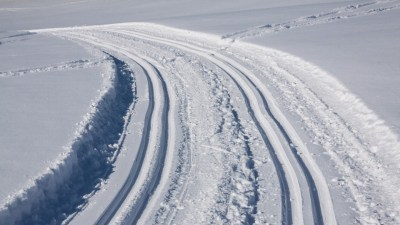 День распутывания лыжных следов