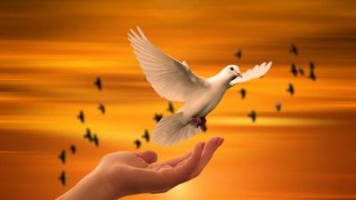 9 ноября отмечают Всемирный день свободы