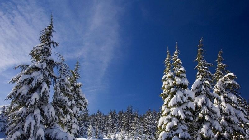 День ухода зимы