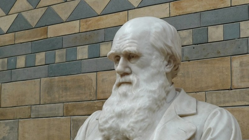 День Дарвина отмечают в мире 12 февраля